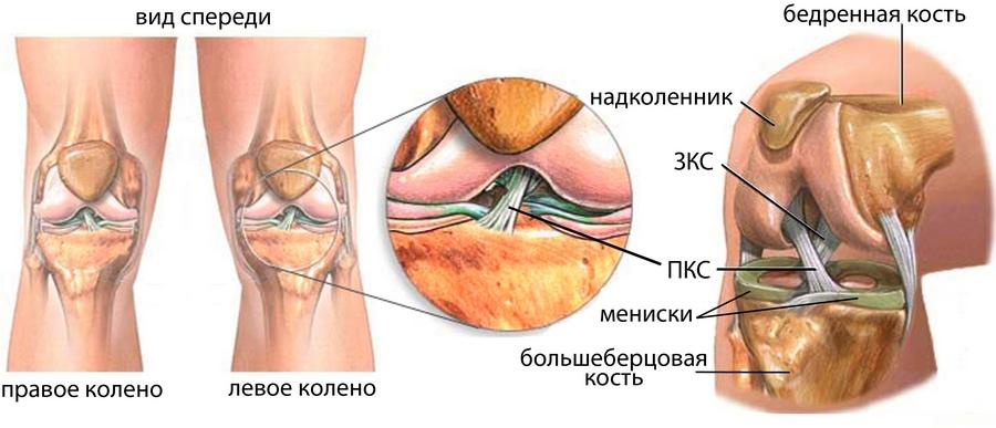 Артроскопия коленного сустава в кемерово гиалуроновая кислота мазь суставов
