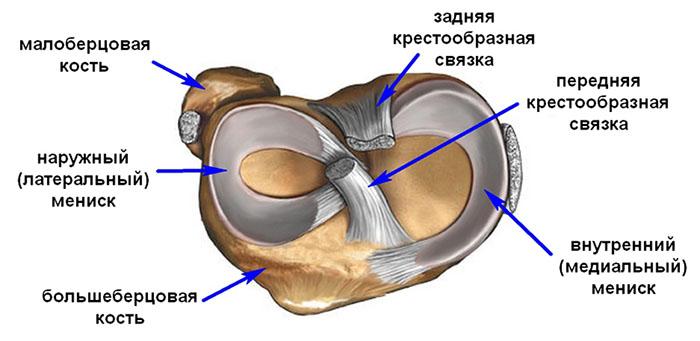 Мениск коленного сустава артроскопическая хирургия операция эндопротезирование тазобедренного сустава за свои деньги